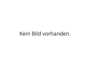 Pendel-Knickgelenk-Vibrationswalze mieten leihen